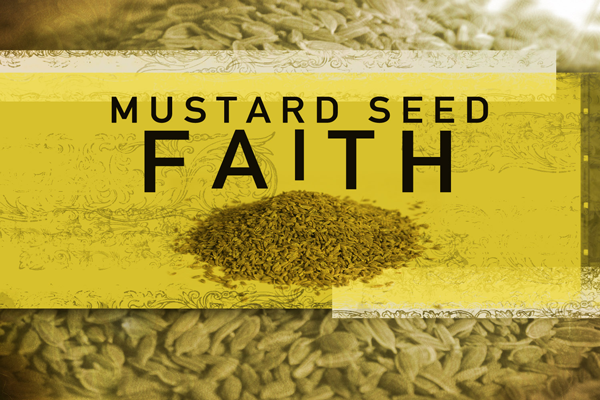 Mustard Seed Quotes! on Pinterest | Seeds, Faith and Have ...