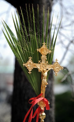 Photograph of crucifix and palms