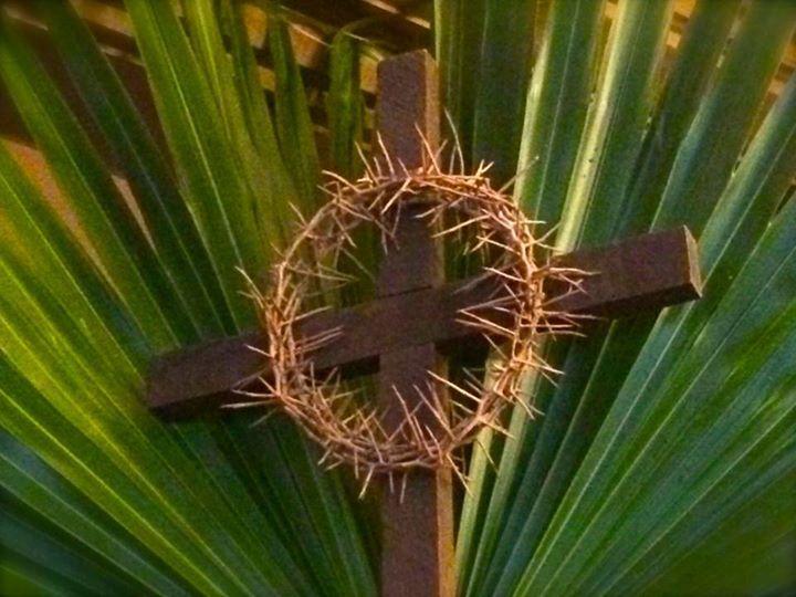 Sunday of the Passion, Palm Sunday, Matthew 21:1-11, Matthew 27:11-54, Sermon, Holy Week, Triumphal Entry