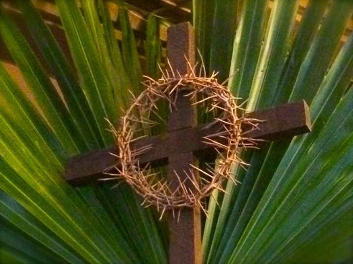 Sunday of the Passion, Palm Sunday, Matthew 21:1-11, Matthew 27:11-54, Sermon, Holy Week, Triumphal Entry