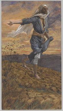 parable of the sower, proper 10A, sermon, Matthew 13:1-23, border crisis, border children, refugees