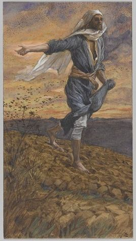 parable of the sower, proper 10A, sermon, Matthew 13:1-23, border crisis, border children, refugees