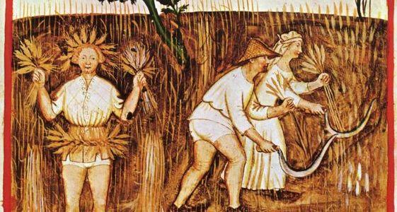 Sermon, Parable of the Weeds, Proper 11A, Matthew 13:24-30 36-43, Tacuina Sanitatis, Judgment, Forgiveness, Love