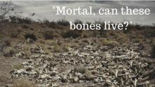 John 11:1-45, Ezekiel 37:1-14, Sermon, Valley of Dry Bones, Raising of Lazarus, Disappointment, Unanswered Questions,