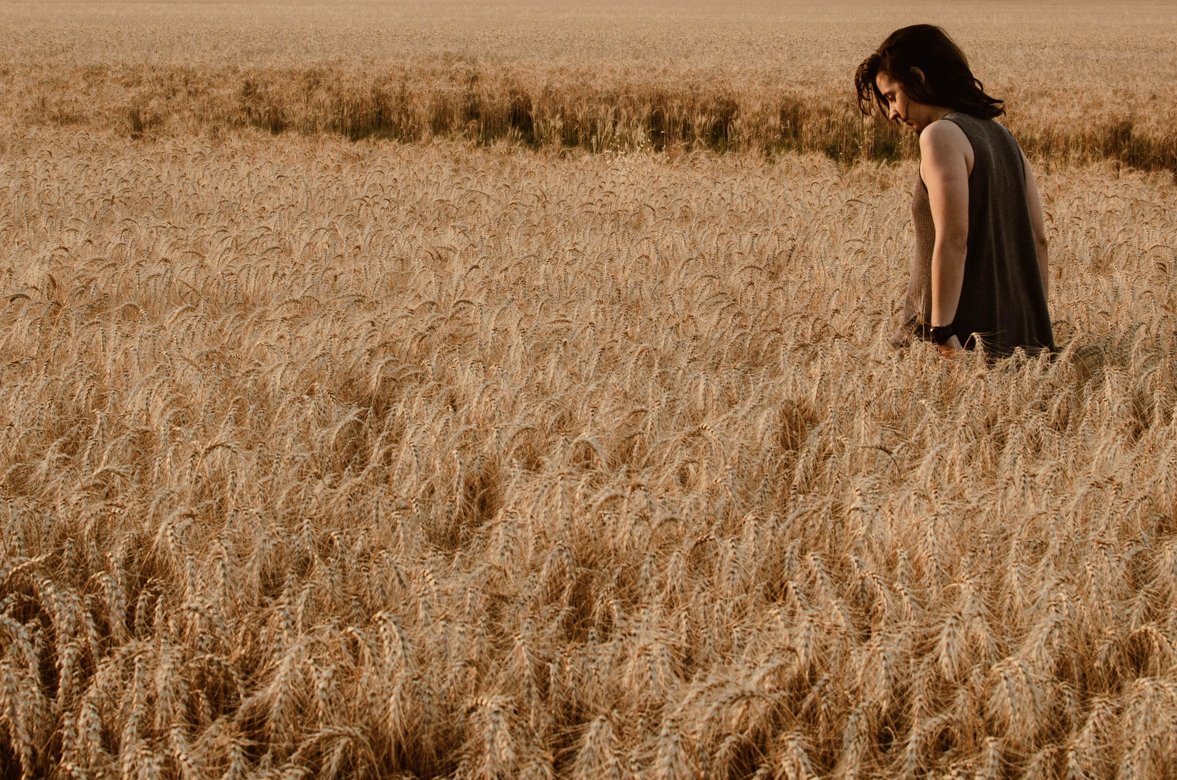 Wheat and Weeds Parable, Sermon